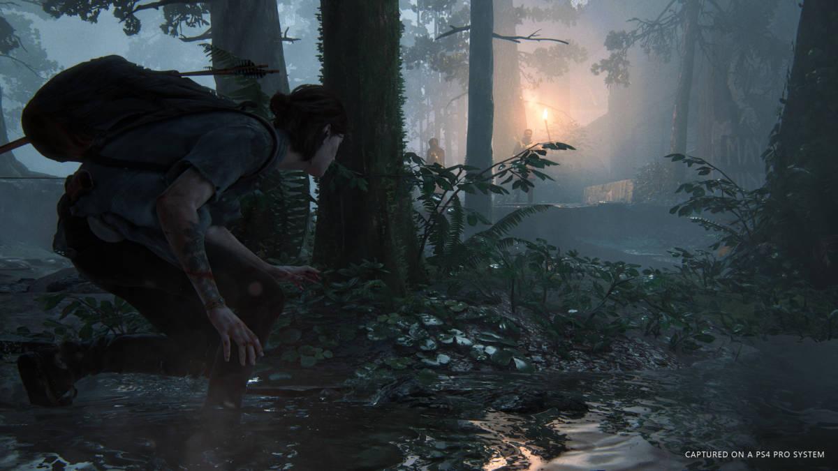 The Last of Us 2 Pro